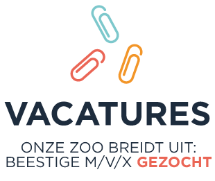 Button_vacatures
