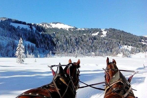 paardenslee-filzmoos-salzburger-sportwelt-amade-wintersport-oostenrijk-interlodge