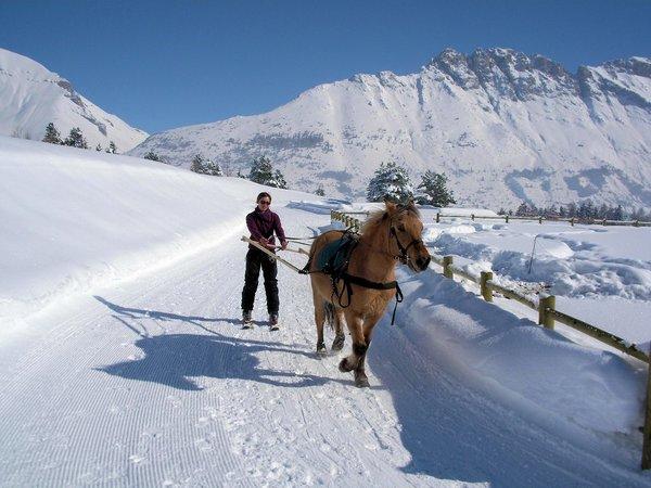 ski-joe‹ring-de‰voluy-frankrijk-wintersport-ski-snowboard-raquette-schneeschuhlaufen-langlaufen-wandelen-interlodge.jpg