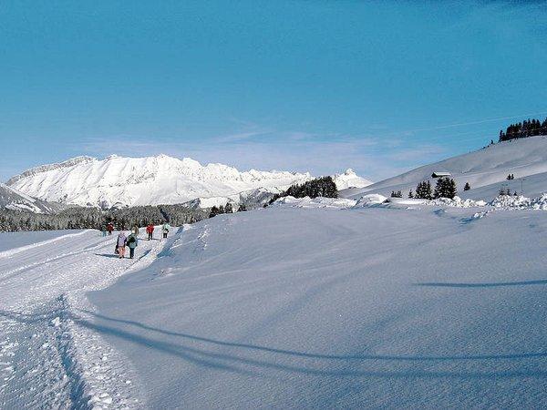 l-espace-diamant-langlauf-en-raquettes-frankrijk-wintersport-ski-snowboard-raquette-schneeschuhlaufen-langlaufen-wandelen-interlodge.jpg