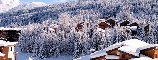 chalets-de-la-tania-les-trois-vallees-wintersport-frankrijk-ski-snowboard-raquettes-langlaufen-wandelen-interlodge.jpg