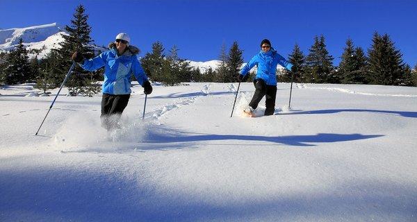 raquettes-de‰voluy-frankrijk-wintersport-ski-snowboard-raquette-schneeschuhlaufen-langlaufen-wandelen-interlodge.jpg