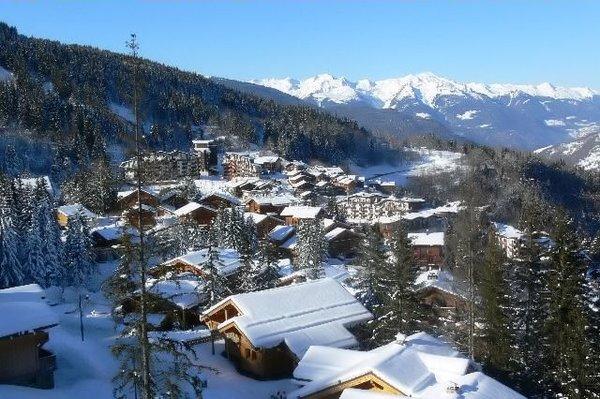 chalets-van-la-tania-les-trois-vallees-wintersport-frankrijk-ski-snowboard-raquettes-langlaufen-wandelen-interlodge.jpg