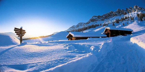 ski-amade-wintersport-vakantie-oostenrijk-ski-snowboard-raquete-schneeschuhlaufen-langlaufen-wandelen-interlodge.jpg