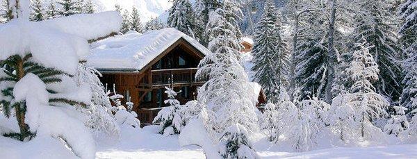 la-tania-chalets-de-la-tania-les-trois-vallees-wintersport-frankrijk-ski-snowboard-raquettes-langlaufen-wandelen-interlodge.jpg