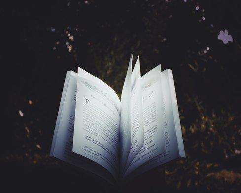 Waarom storytelling?
