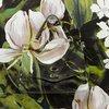 Postinap m bag pelle toro mariposa lime