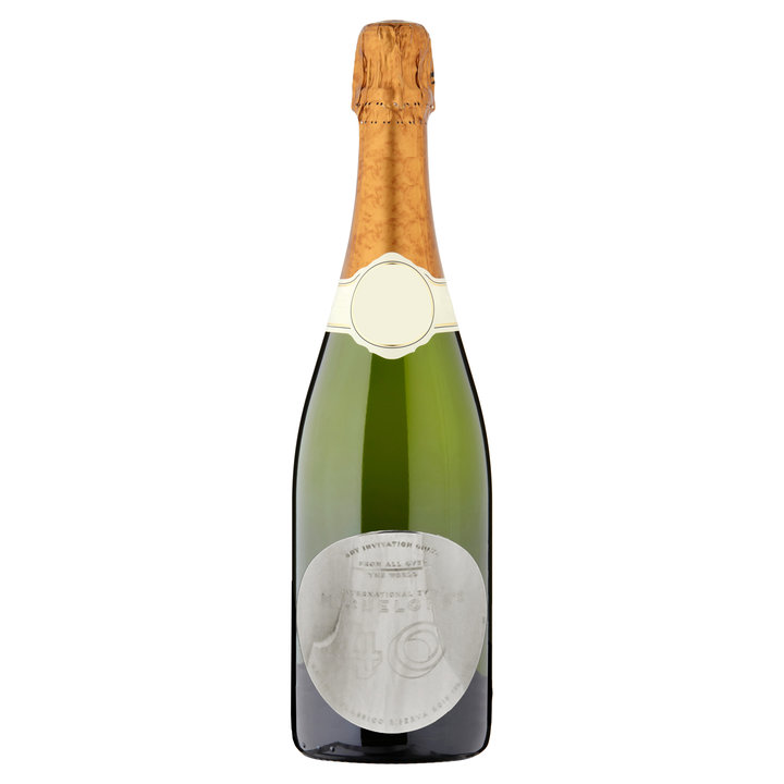 Bottle champagne argento copia