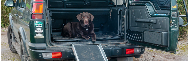 Foldable dog ramp for easy access into your Land Rover