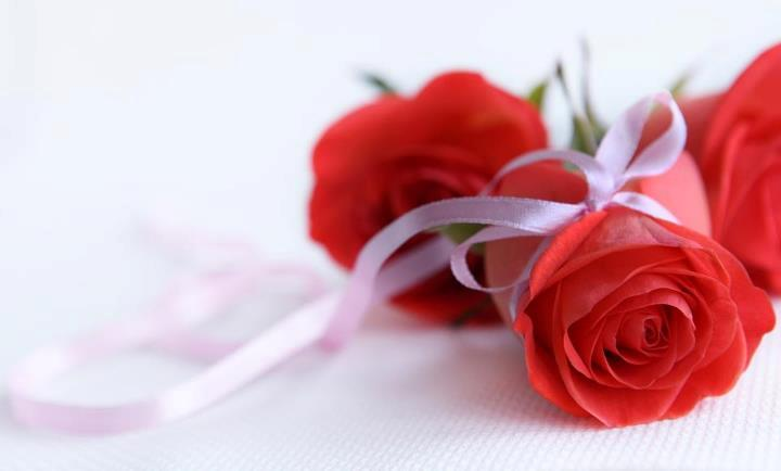 Red-Rose-Meaning-Dubai