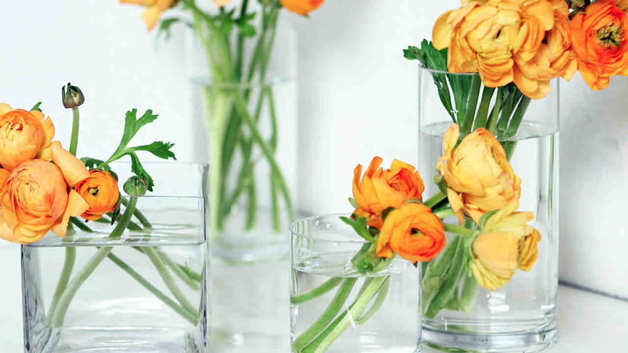 how-to_clean_a_flower_vase_horiz