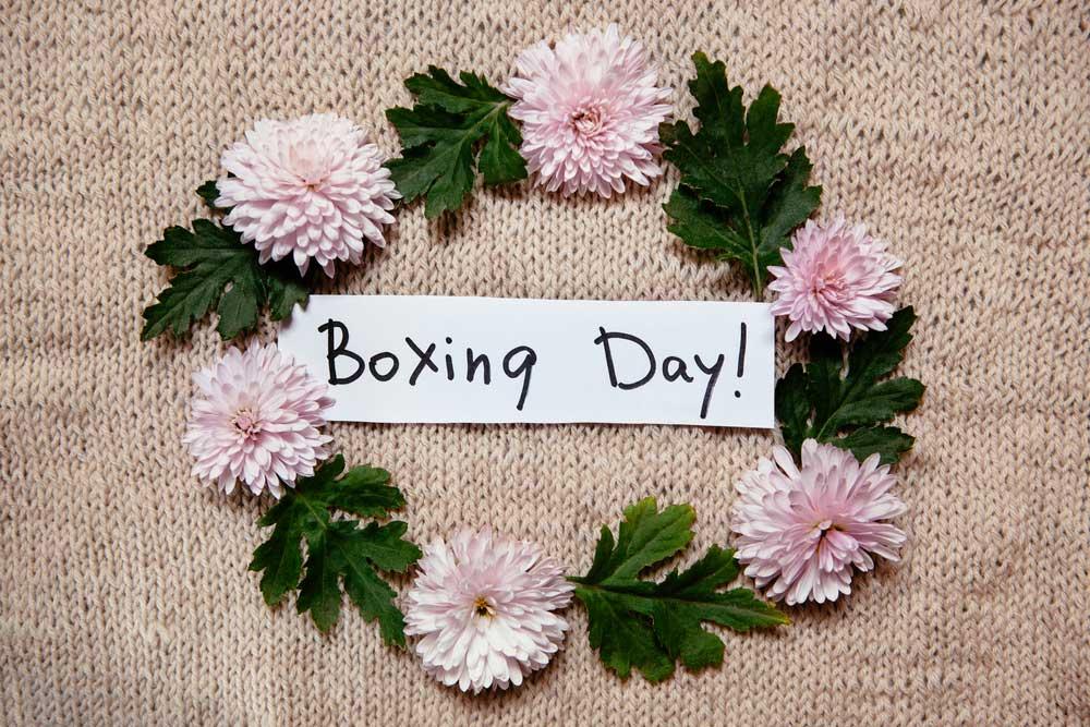 Boxing-day-Flowers-Dubai