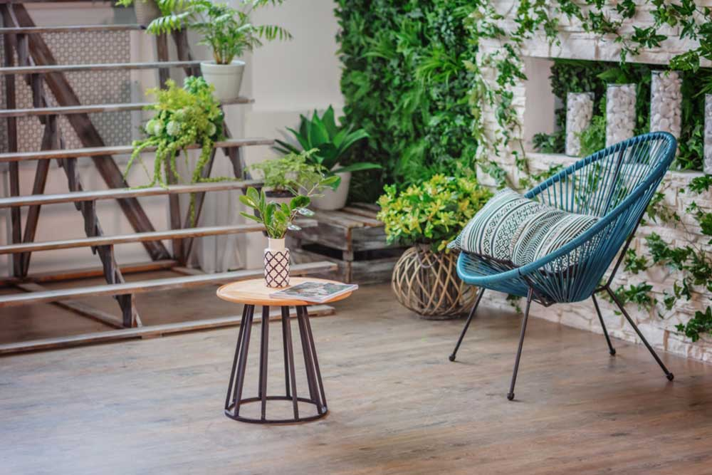 Plants-to-Purify-Your-Home