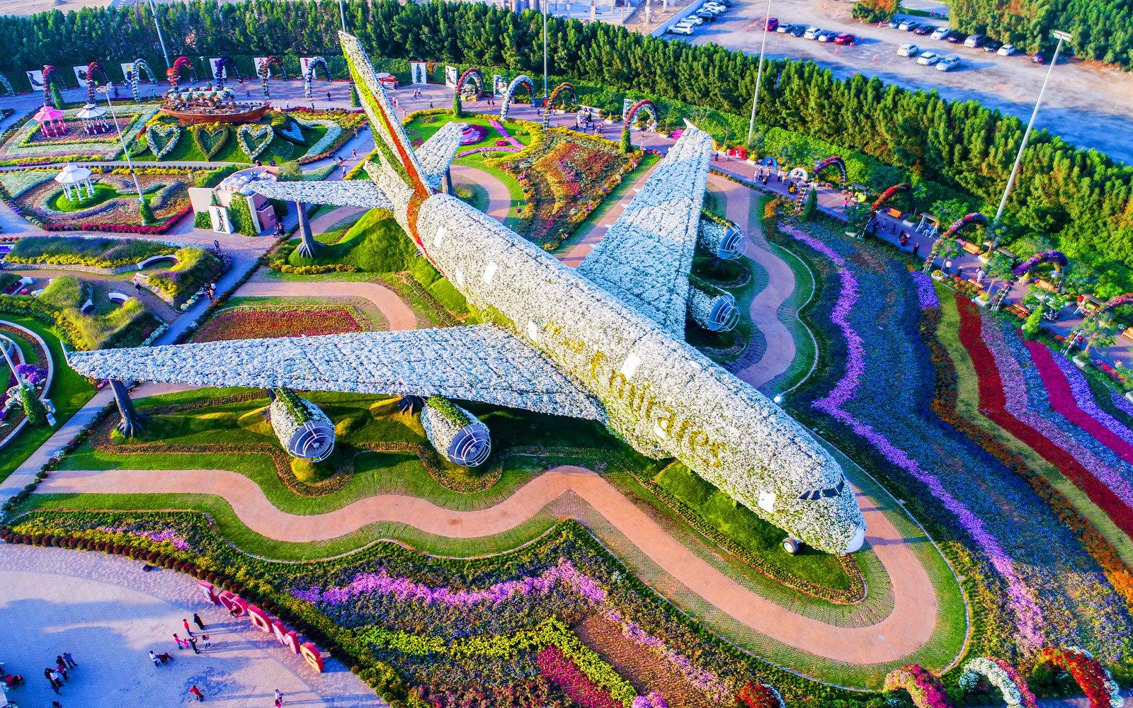 Сад цветов в Дубае
