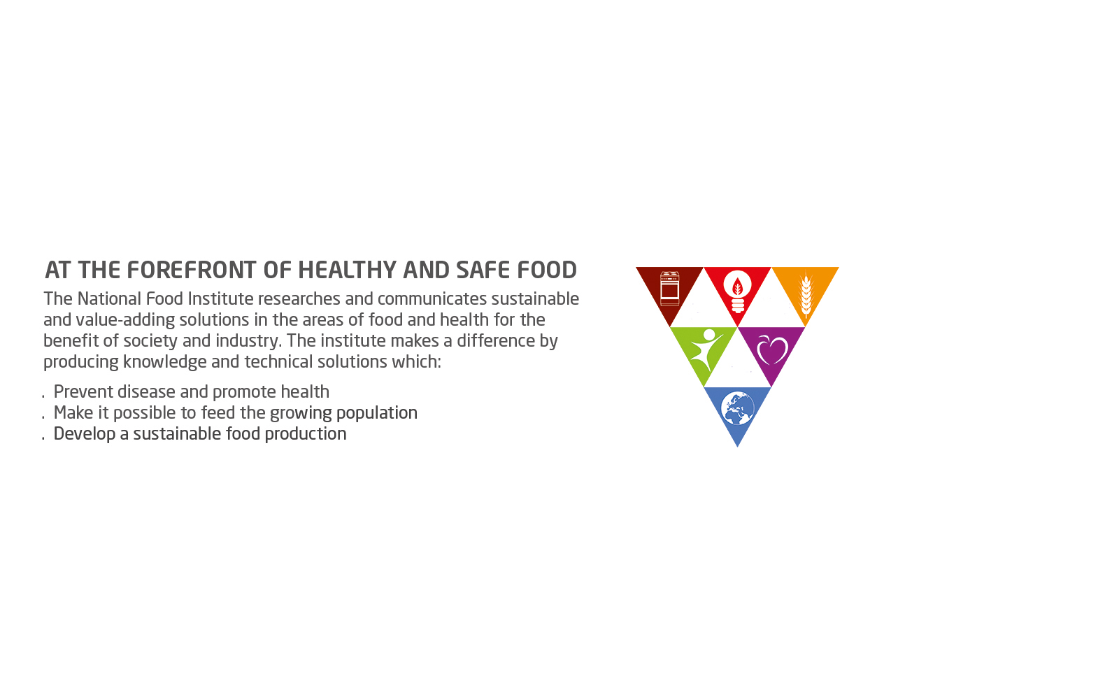 National Food Institute  banner