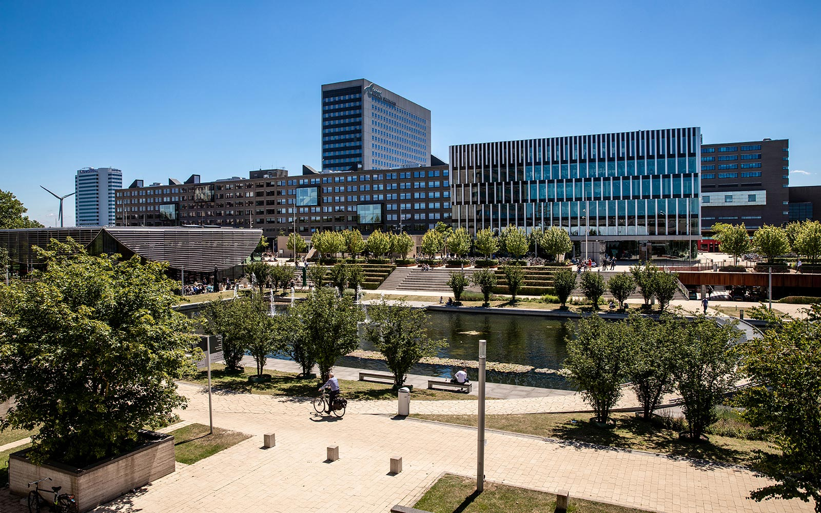 Rotterdam School of Management  banner