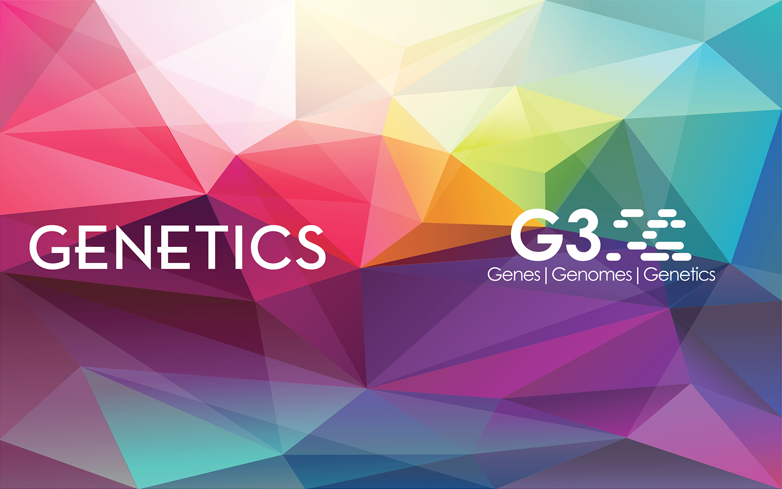 GSA Journals  banner