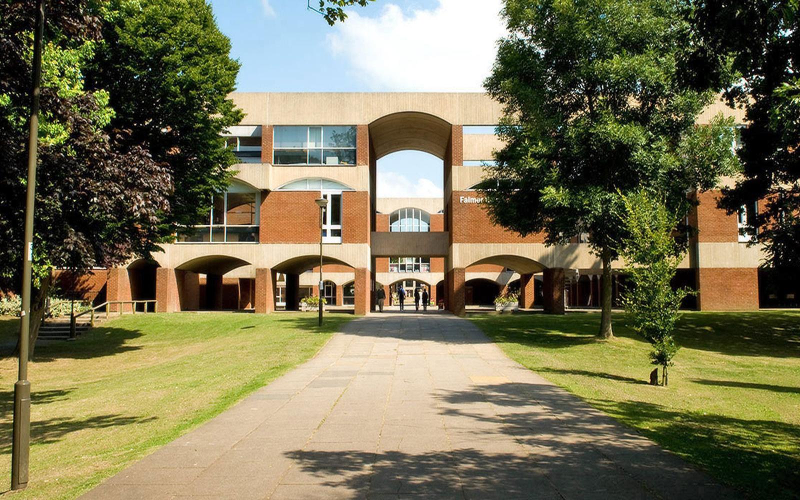 University of Sussex  banner