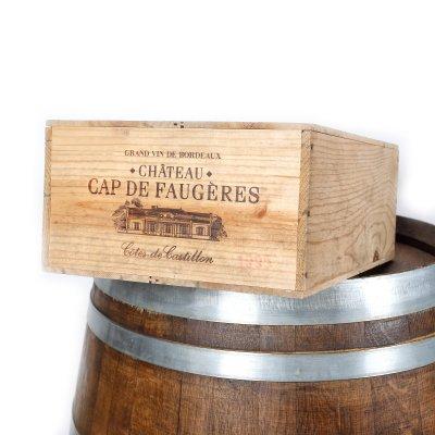 Lot format din vinuri Côtes de Castillon CBO, Cap de Faugères, 1995, 12st x 0,75l