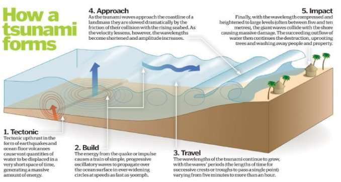 http://www.howitworksdaily.com/wp-content/uploads/2011/03/Tsunami-formation-large.jpg