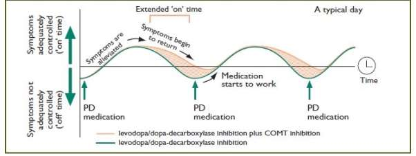 causes and impacts of parkinsons disease Parkinson's disease (pd) is a common neurodegenerative disease characterized by bradykinesia, tremor, rigidity, and postural instability motor disorders are composite and combined, adversely affecting the patient's health tremor and rigidity are correlated with worsening manual dexterity as .