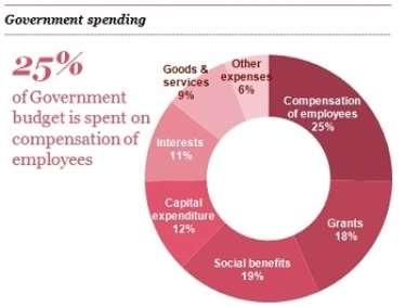 http://www.pwc.com/mu/en/budget/budget2014/assets/government-spending.jpg