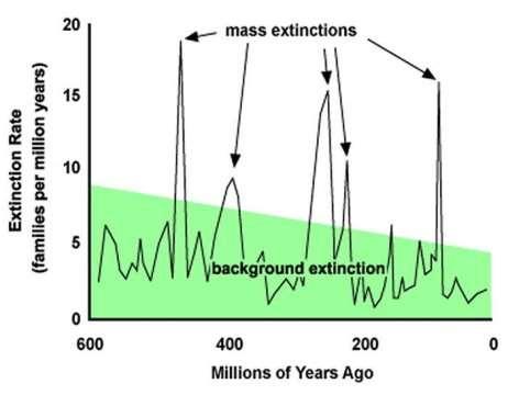 http://www.mtholyoke.edu/%7Ewilli29m/classweb/econ/pics/extinction%20graph.jpg