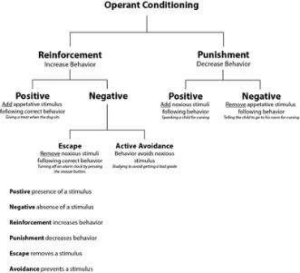 http://upload.wikimedia.org/wikipedia/commons/thumb/1/16/Operant_conditioning_diagram.png/400px-Operant_conditioning_diagram.png