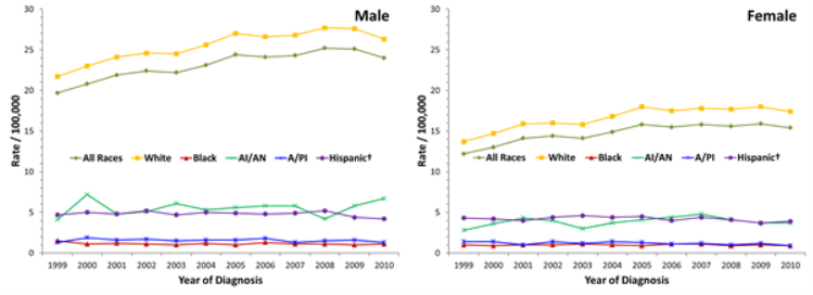 Line charts showing the changes in melanoma of the skin incidence rates for males and females of various races and ethnicities.
