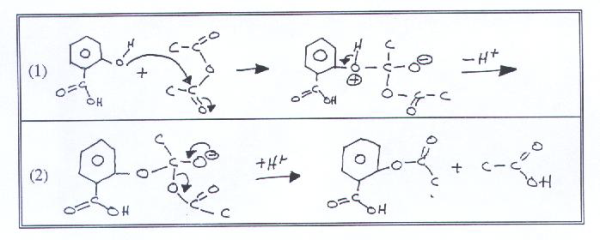 synthesis of aspirin and oil biology essay The synthesis of aspirin biology essay published: november 2, 2015 the objective of this experiment is to enable us to synthesis of aspirin and oil biology essay.