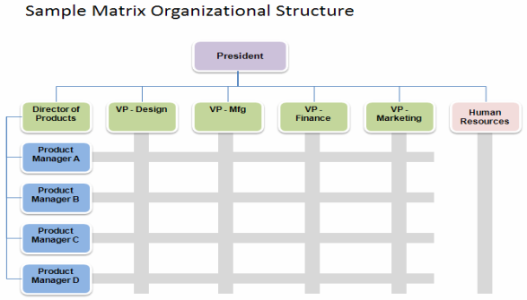 matrix-organizational-structure.gif