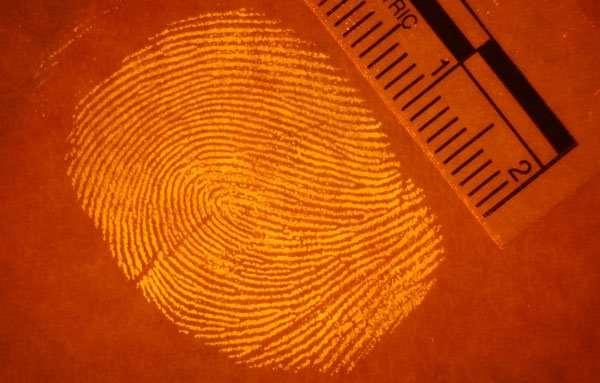 http://www.forensicsciencesimplified.org/prints/img/DSC_0010.jpg