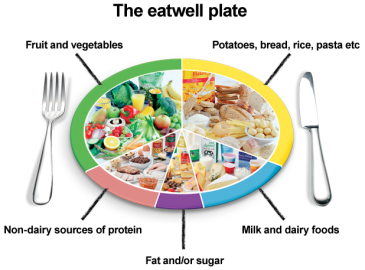 http://www.healthystart.nhs.uk/wp-content/uploads/2011/05/eatwell-plate-label.png