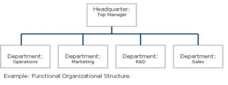 different organizational structures for essays This essay has been submitted by a law student this is not an example of the work written by our professional essay writers compare and contrast different organizational structure.