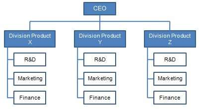 organisational structure and different types of structures  divisional structure