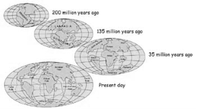 http://www.classroomatsea.net/general_science/images/plate_history.jpg