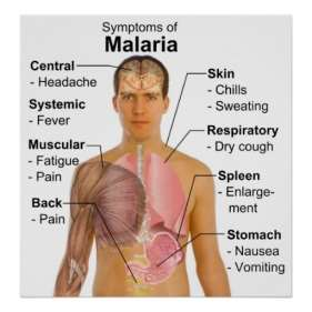 carta_dos_sintomas_da_doenca_mosquito_carregada_da_poster-r104aa96342ca4b668cb0b68a6f6cac4d_aiknp_8byvr_512
