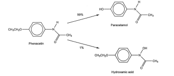 synthesis of phenacetin from para acetamidophenol essay Lab 10: williamson ether synthesis: preparation of phenacetin from acetaminophen erica li (lab partner: sankhya a) july 25, 2016 methods and background the purpose of this experiment is to prepare phenacetin by williamson ether synthesis of acetaminophen using iodoethane and potassium carbonate.
