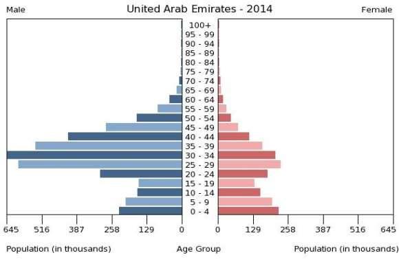 \ClientE$populationPyramid.Region.php.jpg