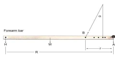 http://demoweb.physics.ucla.edu/sites/default/files/6A_6_arm.jpg