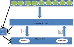 Art 1Neural Network Architecture