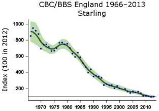 graph starling.jpg