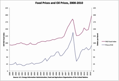 Evolution of food and fuel prices