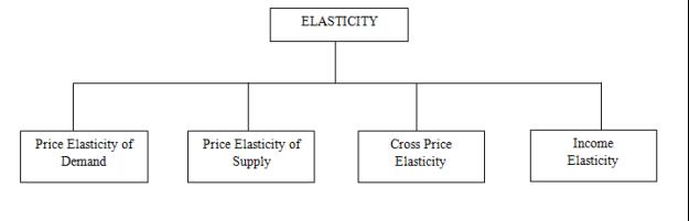 Elasticity.PNG