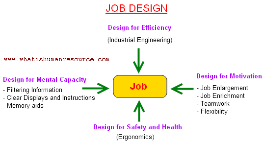 an analysis of the motivation job design and efficiency and improvements at bruanability Job analysis encompasses a number of different methods [citation needed] it primarily involves the systematic collection of information about a joba task-oriented job analysis involves an examination of the duties, tasks, and/or competencies required by the job being assessed.