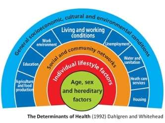 Wider Determinants of Health image