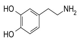 http://www.sexualhealthsite.info/wp-content/uploads/2011/03/Dopamine.png