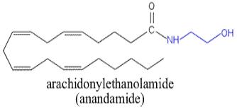 http://guweb2.gonzaga.edu/faculty/cronk/biochem/images/anandamide.gif