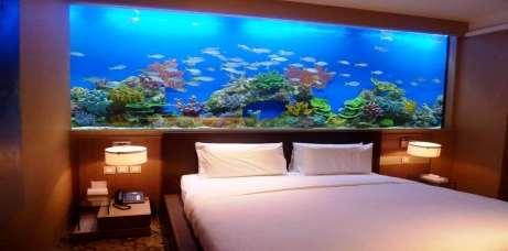 http://realhousedesign.com/wp-content/uploads/2013/11/Aquarium-Design.jpg