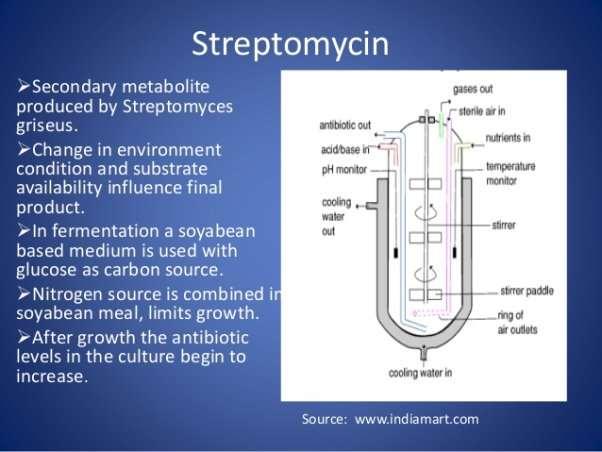 http://image.slidesharecdn.com/mukherjisirppt-140514044556-phpapp01/95/metabolites-antibiotics-by-fermentation-4-638.jpg?cb=1400042849